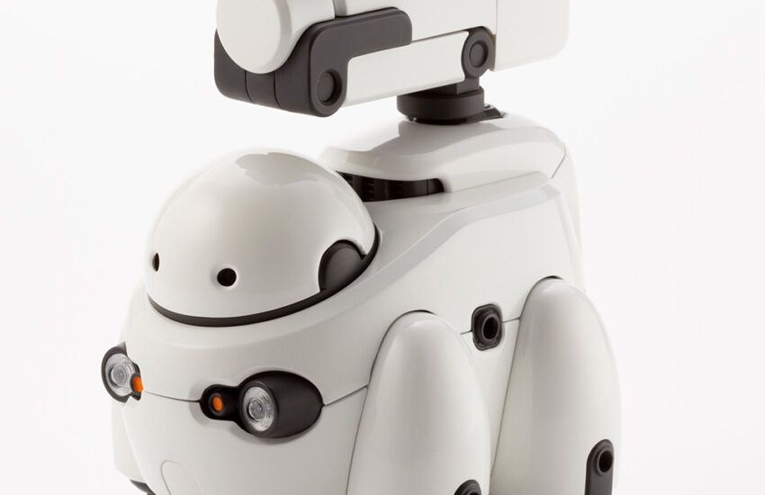 TAMOTU robot