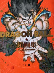 Dragon Ball art book-2